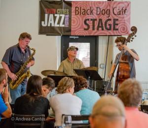 Dave Brattain Trio at the Black Dog, © Andrea Canter